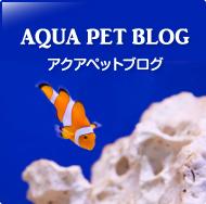アクアペットブログ