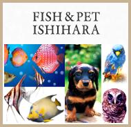 FISH&PET ISHIHARA